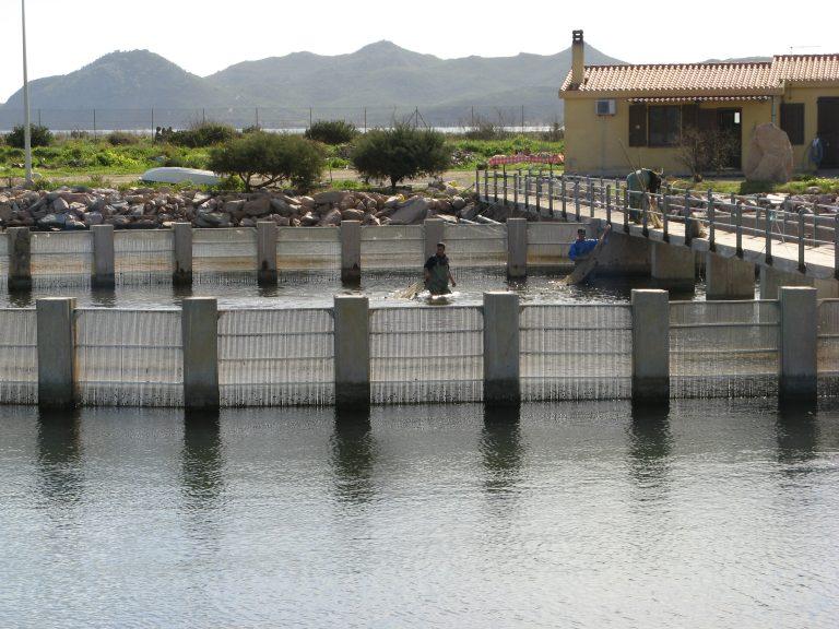 Pubblicata legge proroga concessioni pesca e acquacoltura