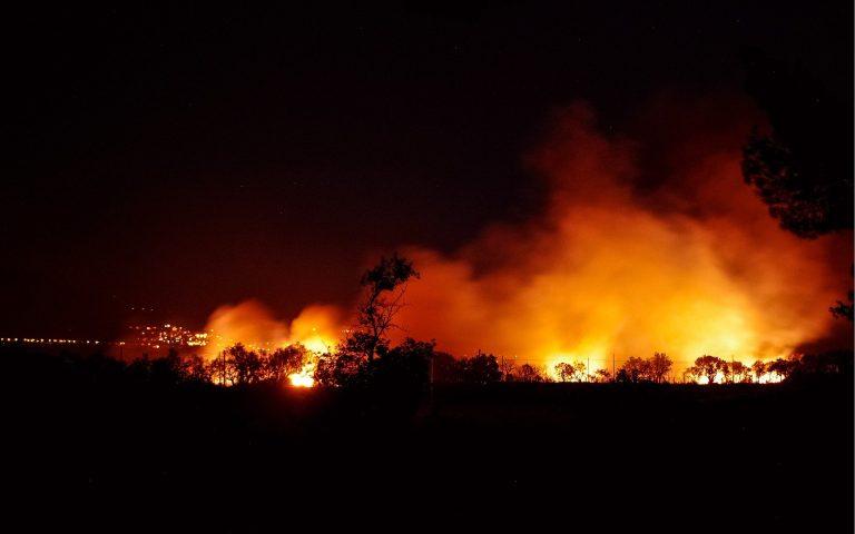 Confcooperative Sardegna interviene sulla tragica situazione degli incendi