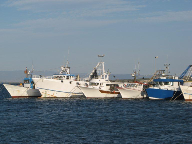 Decreto fermo strascico 2021 Sardegna